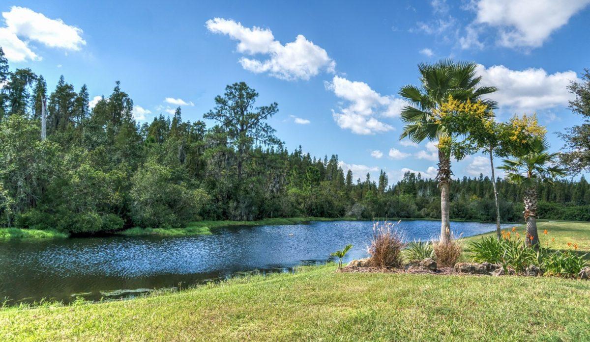Osceola Florida Pest Control