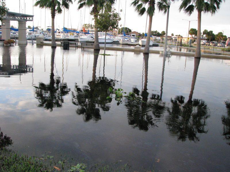 Sanford Florida Pest Control