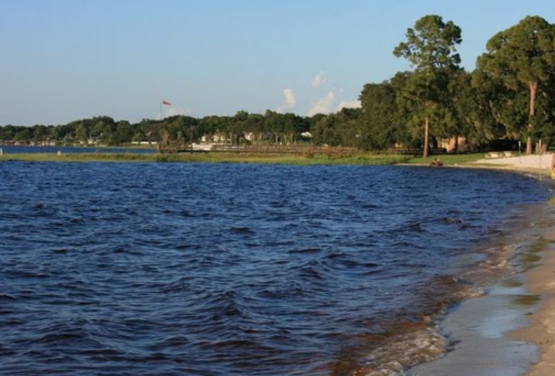 Minneola Florida Pest Control