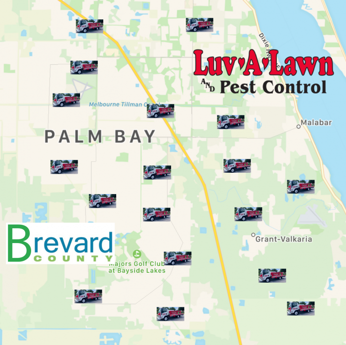 Palm Bay Pest Control